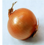 Onion-Foodchem
